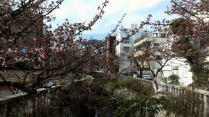 糸川0126