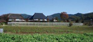MOA農場